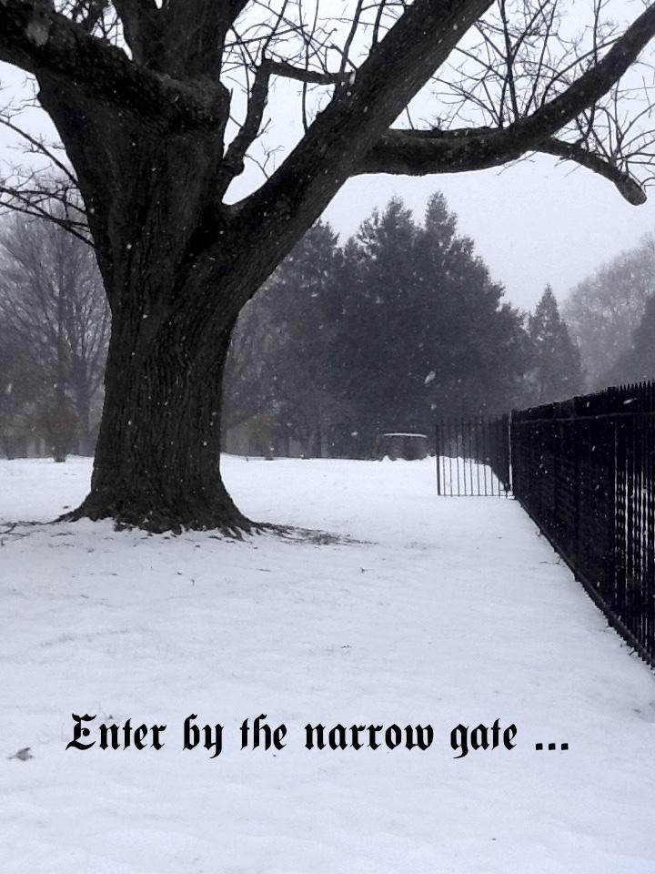 best gate1 copy