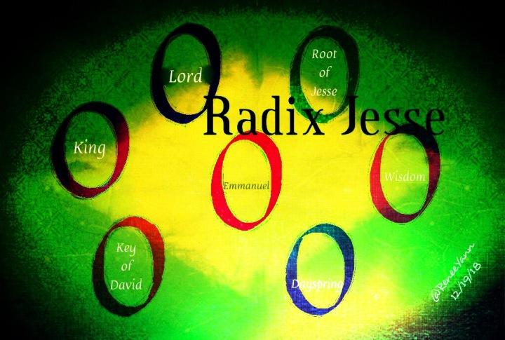 Radix Jesse