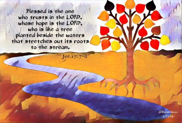 Jer17_7 tree