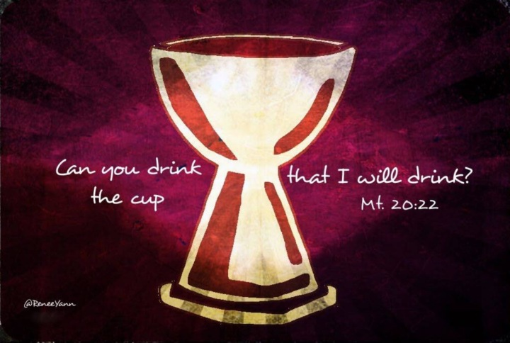 Mt20_22 cup