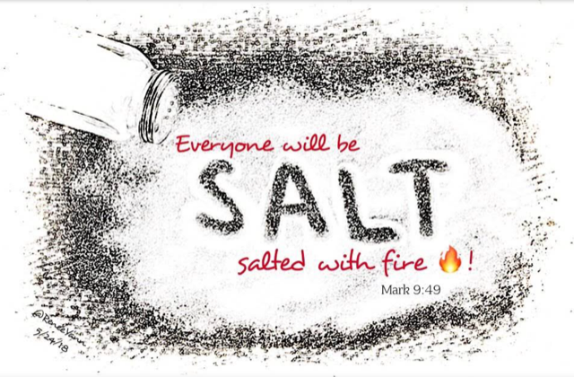 Mk9_49_ salt