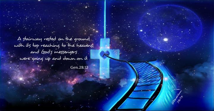 Gen28_12Ladder