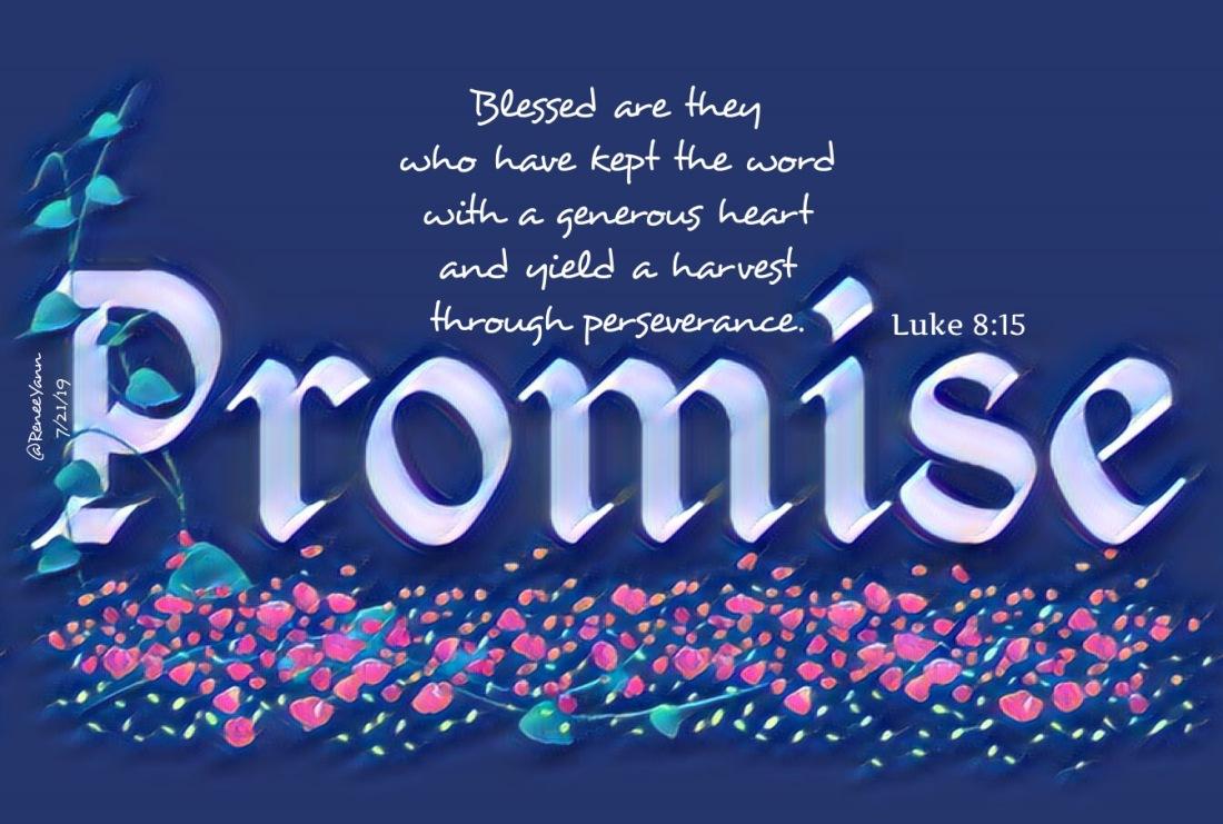 Luke8_15 promise