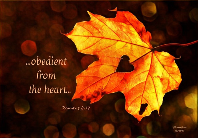 Rm6_17 obedient heart