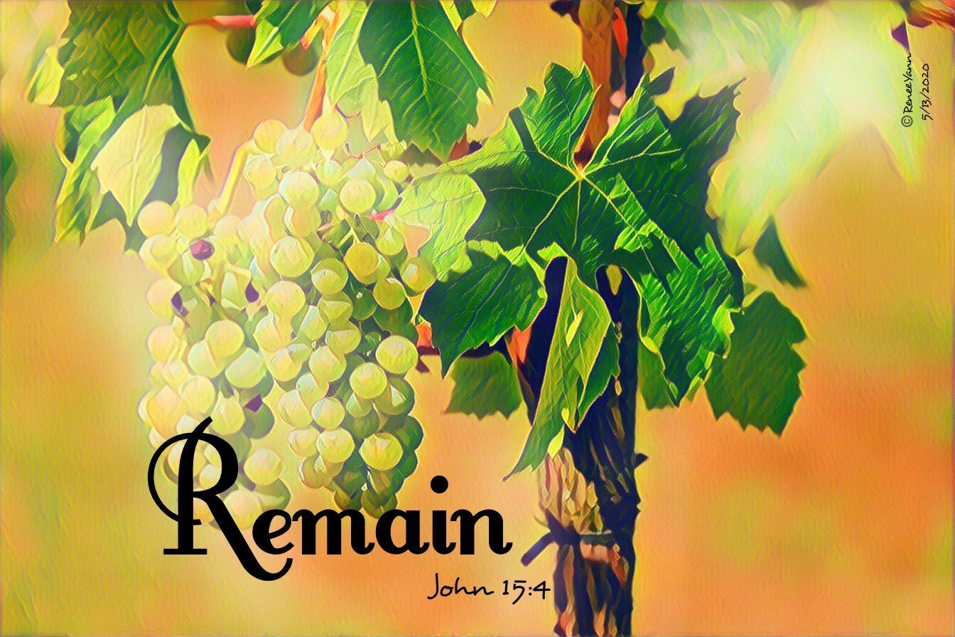 John15_4 Remain